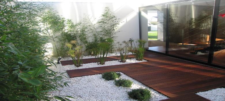 usar? Confira tudo sobre plantas para jardim de inverno e se inspire