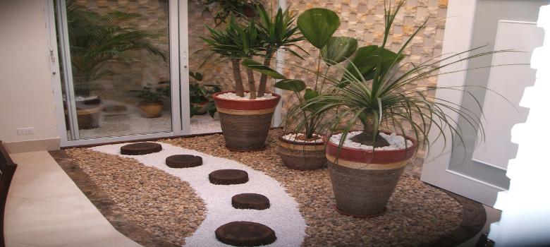 plantas jardim inverno : plantas jardim inverno:Como Escolher Plantas Para Jardim de Inverno
