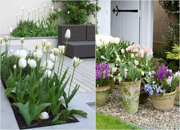 Jardim externo – Como decorar 4 dicas de decoração como decorar como organizar